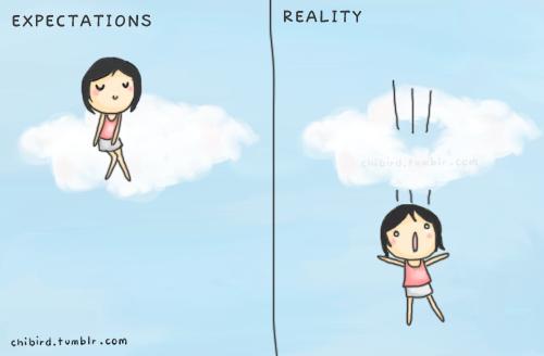 chibird-cute-expectations-reality-Favim.com-132574